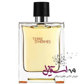 Perfume Hermes Terre D Hermes Eau De Toilette For Men 200ml0dc6bb - ادو تويلت مردانه هرمس مدل Terre De Hermes حجم 200 ميلي ليتر