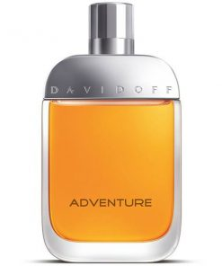184622 247x296 - ادو تویلت مردانه داویدف مدل Adventure حجم 100 میلی لیتر