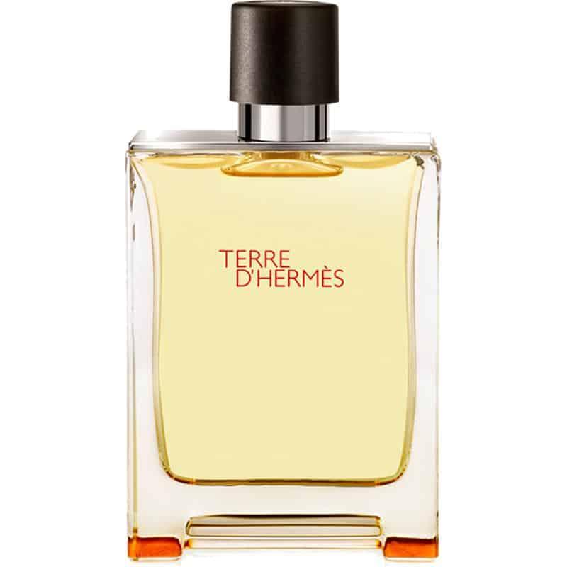 97 010407dd1d3380935a8666bbe127c03d - تستر اماراتی ادو تویلت مردانه هرمس مدل Terre D'Hermes حجم 100 میلی لیتر