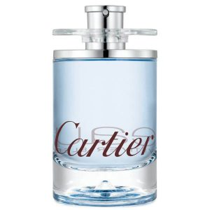 640724 300x300 - ادو تویلت کارتیه مدل Eau de Cartier Vetiver Bleu حجم 100 میلی لیتر