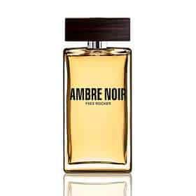 1602430 - ادو تویلت مردانه ی ایو روشه مدل آمبر نوآر Ambre Noir حجم 100 میلی لیتر