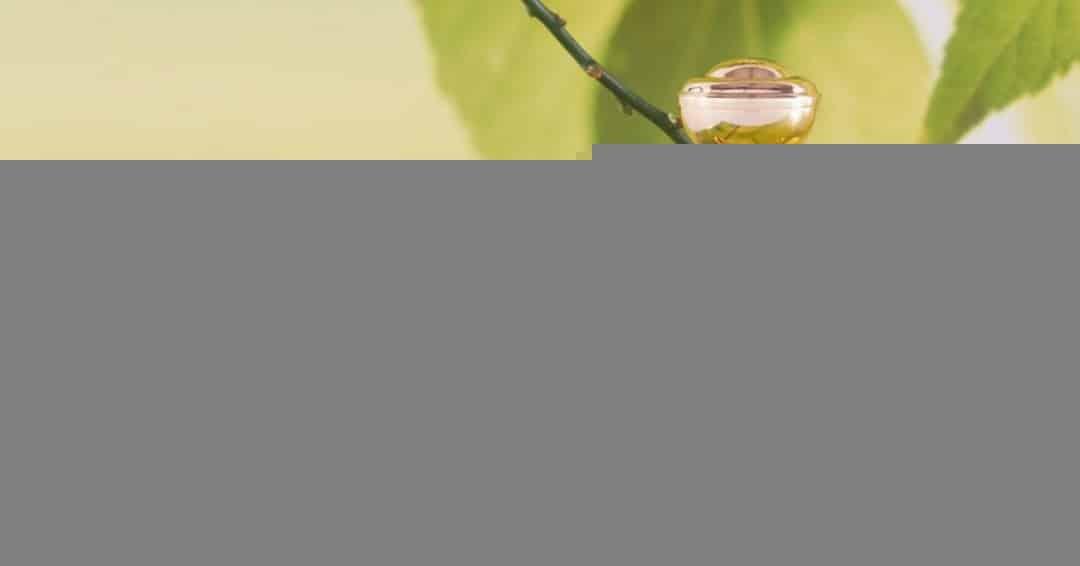 lemon mehstyle - نکات کلیدی درباره عطر درمانی