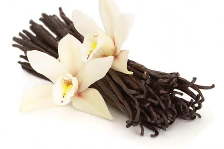 vanilla mehstyle - نکات کلیدی درباره عطر درمانی