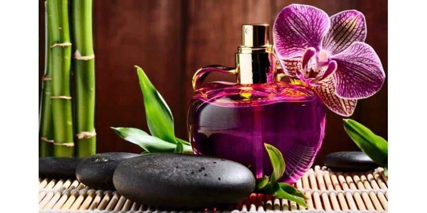 رایحه طبیعت در عطر
